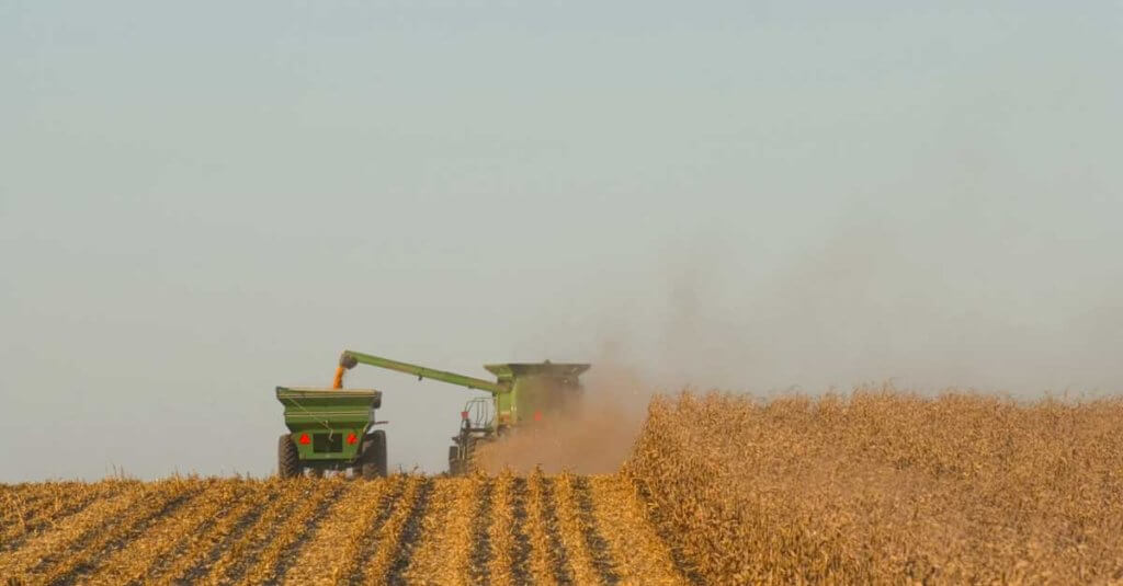 Challenges with CCC loans reported as income (combine in field harvesting corn)