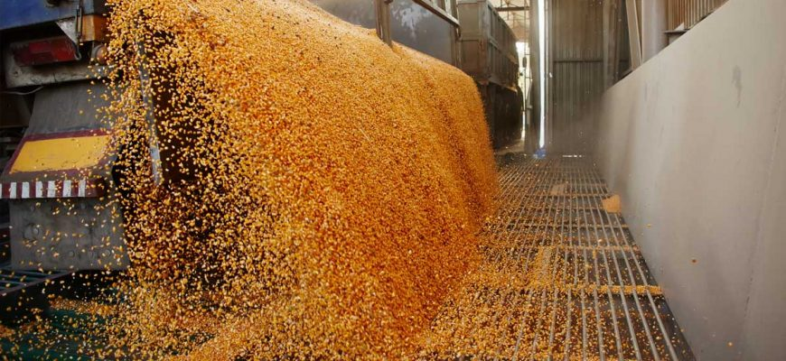 Difficult Decisions - Grain Markets and Lending